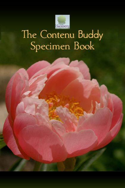 The Contenu Buddy Book Design package
